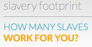 Calculate Your Slavery Footprint